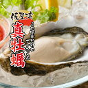 【ふるさと納税】(11月下旬以降発送)仮屋湾の真牡蠣(1.8...