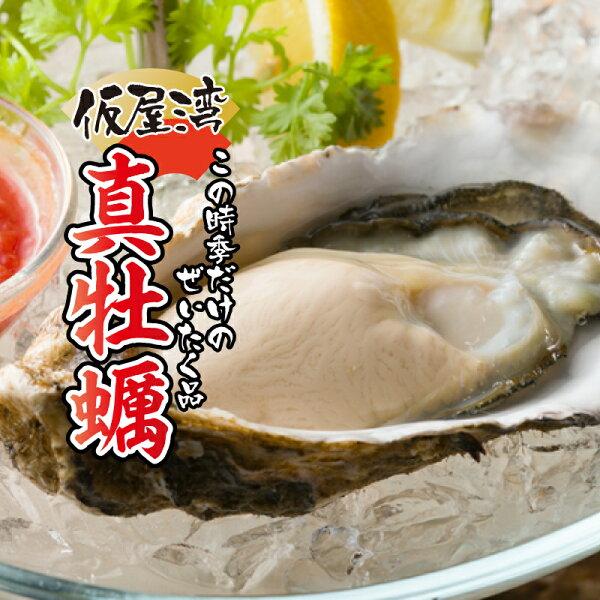 ふるさと納税 仮屋湾の真牡蠣(1.8kg) 殻付き