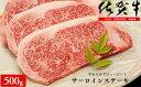 N30-16【ふるさと納税】佐賀牛サーロインステーキ500g