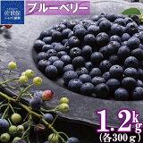 冷凍ブルーベリー「あいあいの雫」1,200g