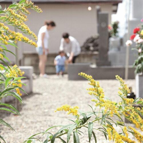 【ふるさと納税】 お墓掃除プラン:長崎県島原市