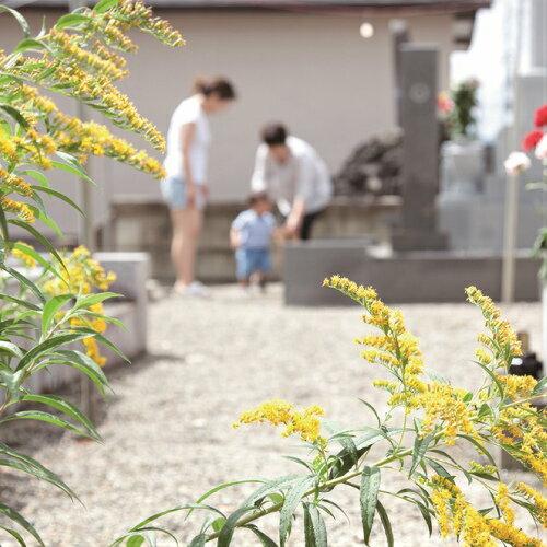 【ふるさと納税】お墓参り代行プラン:長崎県島原市