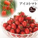 アイコのちゃんちゃん焼き(世界一受けたい授業で紹介)のレシピ 夏野菜