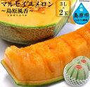 【ふるさと納税】マルセイユメロン〜島原風香〜(3L×2玉)