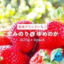 【ふるさと納税】【期間限定】野菜ソムリエselection ...