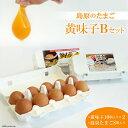 【ふるさと納税】島原のたまご 黄味子Bセット(卵10個入×2