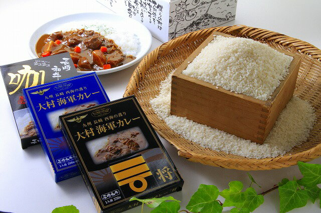 【ふるさと納税】1162.お米とカレーセット