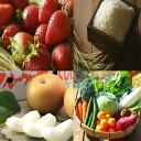 【ふるさと納税】【5回定期便】シュシュ 農産物 よりどりコー