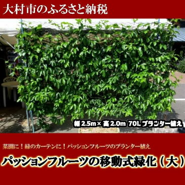 【ふるさと納税】0187.パッションフルーツの移動式緑化 (大)
