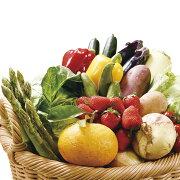 【ふるさと納税】安心の地元野菜と果物のお任せセット