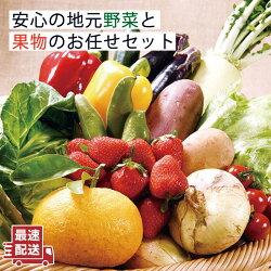 【ふるさと納税】【ソムリエ厳選】安心の地元野菜と果物のお任せセット【ひらど新鮮市場】[KAB019]