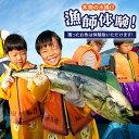 【ふるさと納税】【自分で獲った魚で朝食を】本物の漁師体験!【綾香水産】 [KAC015]