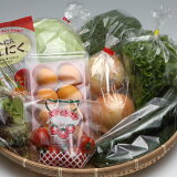 【ふるさと納税】【A5-008】道の駅松浦海のふるさと館『旬のお野菜』の大満足セット!