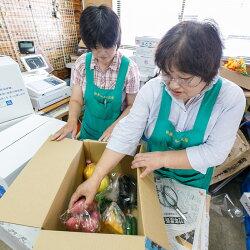 【ふるさと納税】【A7-003】季節の野菜詰め合わせ 画像1