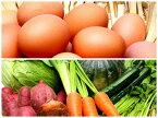 【ふるさと納税】『旬のお野菜+産みたて濃厚玉子』の大満足セット!