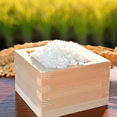 お弁当屋さんが太鼓判!棚田浮立の里のお米 9.5kg【4月発送】