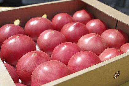 期間限定 真っ赤なトマト3kg〜3.5kg