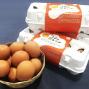 【ふるさと納税】【A7-027】養鶏場直送!松浦の赤たまご(40個)
