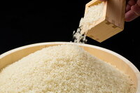 【ふるさと納税】A-013長崎県対馬産「ほたる舞う三根川の米」