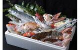 【ふるさと納税】A-067対馬の味便り「唐崎岬網元でとれた新鮮活き〆島魚2kgセット」