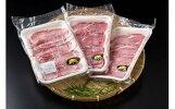 【ふるさと納税】B-004猪肉メスの極上モモスライス
