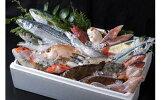 【ふるさと納税】B-043対馬の味便り「唐崎岬網元でとれた新鮮活き〆高価島魚3kgセット」