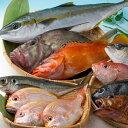 【ふるさと納税】A-067 対馬活〆島魚セット