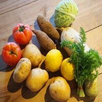 【ふるさと納税】0326朝採れ季節の野菜セット