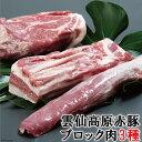【ふるさと納税】長崎県産 雲仙高原赤豚 【ブロック肉3種】 ...