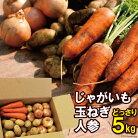 【ふるさと納税】季節の野菜【じゃが・玉ねぎ・人参】セット【雲仙の畑よりお届けします】冬限定品5kg