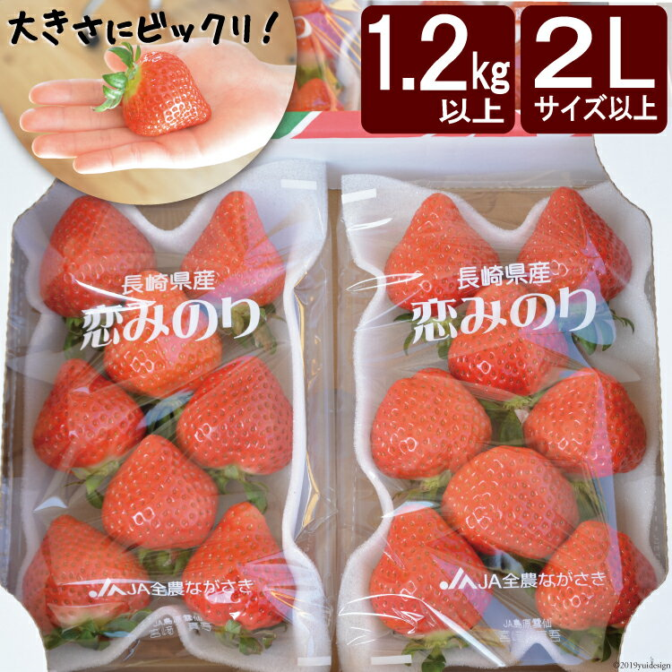 【ふるさと納税】【大粒限定】【1.2kg以上】 いちご「恋みのり」2Lサイズ以上