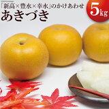 【ふるさと納税】【梨のサラブレッド】秋月(あきづき) 約5kg 数量限定!
