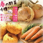 【ふるさと納税】【春の新野菜セット】新じゃがいも・新玉ねぎ・春人参の基本野菜に自慢の旬野菜を1品セットでお届け!約5kg