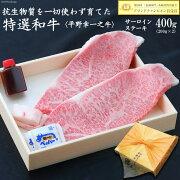 【ふるさと納税】特選和牛<平野幸一之牛>サーロインステーキ(200gx2)合計400g