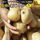 【ふるさと納税】飛子の馬鈴薯じゃがいも10kg(秋じゃが)