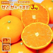 【ふるさと納税】せとかA・B混合約5kg蜜柑ミカンフルーツ柑橘果物A・B品数量限定長崎県産九州産送料無料