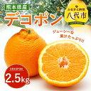 【ふるさと納税】デコポン 2.5kg 送料無料 熊本県産 み...