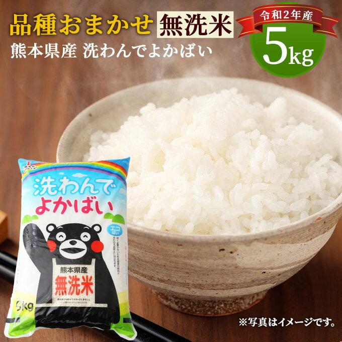 【ふるさと納税】品種おまかせ 無洗米 洗わんでよかばい 5kg 熊本県産 国産 九州...