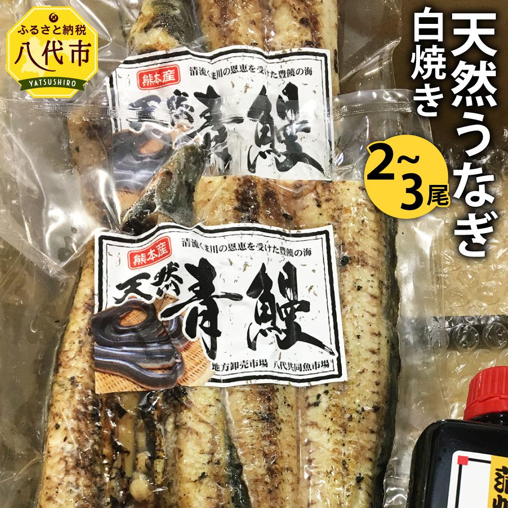 希少! 天然 鰻 白焼き 2〜3尾 合計500g〜600g タレ付き 鰻 国産 蒲焼 ウナギ うなぎ 冷凍 ギフト 送料無料