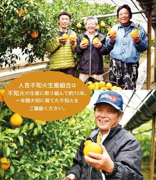 【ふるさと納税】人吉産 不知火 しらぬい 3kg (8〜10玉目安) 1箱 デコポン 柑橘類 熊本 果物 フルーツ 送料無料