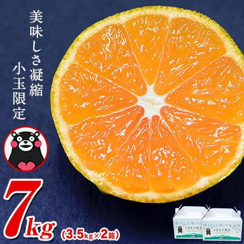 人気12位:訳あり 熊本県産ひとくちもぎたてみかん 約7kg