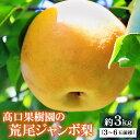 【ふるさと納税】荒尾ジャンボ梨(新高) 約3kg (3~6玉