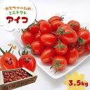 【ふるさと納税】『大家ファーム』のミニトマト アイコ 3.5kg 熊本県玉名