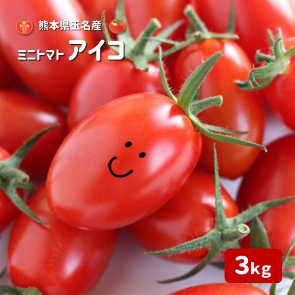 ふるさと納税 かめまる農園ミニトマトアイコ3kg熊本県玉名市産<1月〜6月で>