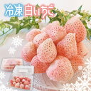 【ふるさと納税】いちご 苺 イチゴ 白イチゴ 白いちご 淡雪 冷凍 フルーツ 果物 2,400g シャーベット かき氷 送料無料 熊本 玉名 横島