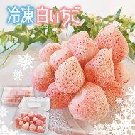 【ふるさと納税】【冷凍】白いちご「淡雪」