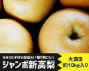 【ふるさと納税】No.145 山鹿産 新高梨 約10kg