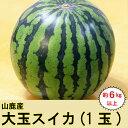 RA-115【ふるさと納税】山鹿産 大玉スイカ 約6kg以上...