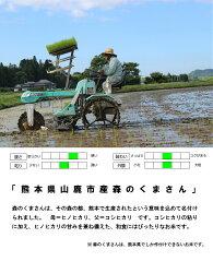 RA-145【ふるさと納税】【無洗米】令和元年産 新米 森のくまさん10kg 画像2