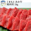 【ふるさと納税】肉三代目【GI認証取得】くまもと あか牛 牛焼肉用 1kg【熊本県宇土市】